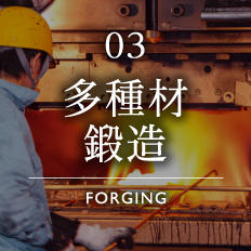 Wide Spectrum of Forging